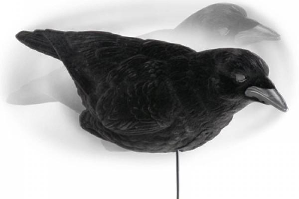 Lockkrähen 3er-Set Lucky Duck für Krähenmagnet