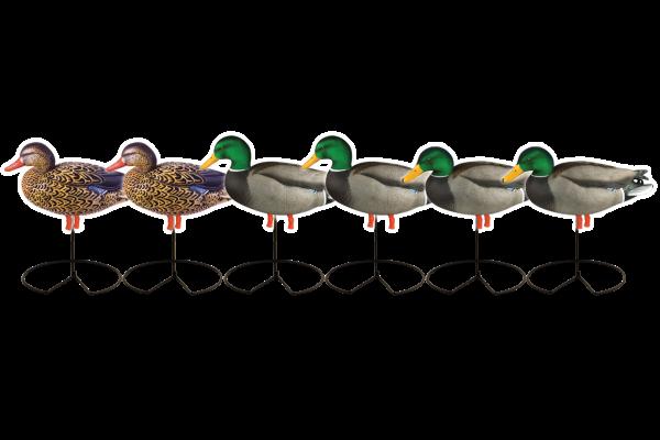 Das Harvester Pack Stockenten Lockenten vom amerikanischen Hersteller Greenhead Gear beinhaltet vier Vollköper Erpel mit beflocktem Kopf und zwei Vollkörper Enten.