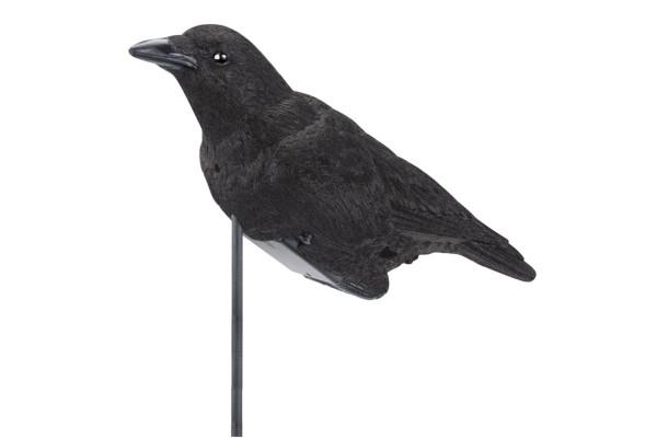 Lucky Duck Elektronischer Krähenlocker Cawling Crow