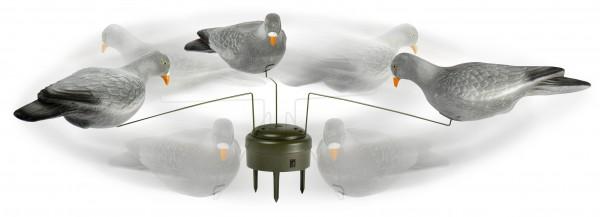 Taubenmagnet Lucky Duck mit 3 beflockten Locktauben