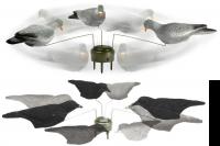 Lucky Duck Krähenmagnet und Taubenmagnet mit je 3 beflockten Krähen und Tauben für Bewegung im Lockbild auf Krähenjagd und Taubenjagd.