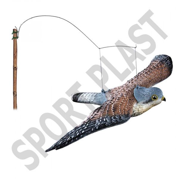 Sportplast Raubvogel fliegender Turmfalke