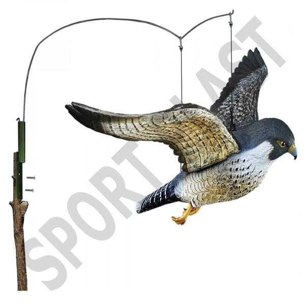 Sportplast Raubvogel fliegender Wanderfalke