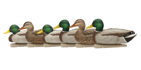 Stockente 6er Pack Top Flight Open Water Mallards Lockenten by OVIS